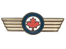 Honorary Colonel Lapen Pin