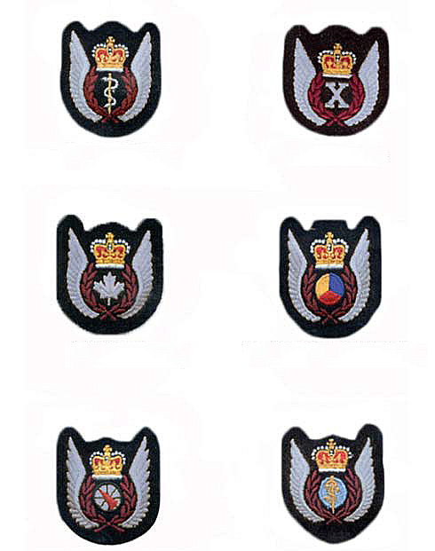 "The new silver flight crew badges (""upswept wings"") for the RCAF, shown in the design for the embroidered fabric versions. From left to right and top to bottom, they are: flight surgeon, flight test engineer, flight crew, tactical helicopter observer, airborne warning and control, and aeromedical evacuation. IMAGE: DND"